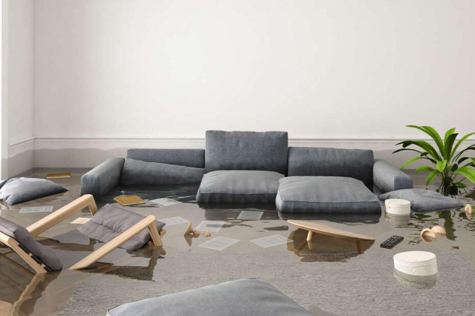 Wohnung mit Wasser überflutet. Sofa, Pflanzen und Unterlagen schwimmen im Wasser.