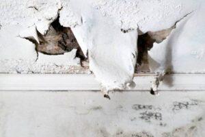 Wasserschaden Wohnung - Schadenbeseitigung des Vermieters