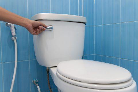 Toilettenspülung